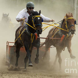 Rodeo Eat My Dust 1 by Bob Christopher