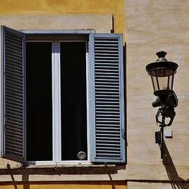Dany Lison - Roman window