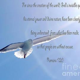 Romans 1 20 by Debby Pueschel