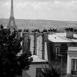 Rooftop View - Paris by Lisa Parrish