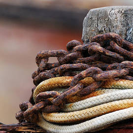 Rope And Chain by Wendy Wilton