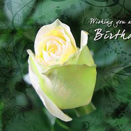 Rose Bud 1 by Helene U Taylor