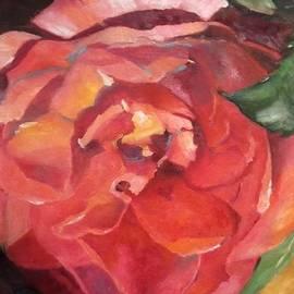 Elisabeth Vismans - Rose