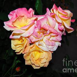 Debra Thompson - Rose Heart at Night