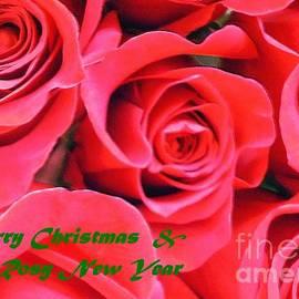 Rose Lovers Christmas card by Barbie Corbett-Newmin