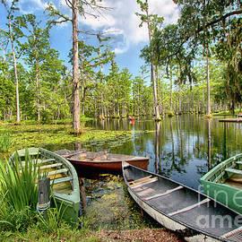 Dan Carmichael - Row Boats in Cypress Tree Swamp I