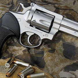 Kent Dunning - Ruger Security Six Stainless