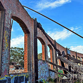 Ruins of the Old Train Roundhouse at Bayshore near San Francisco and the cow Palace by Jim Fitzpatrick