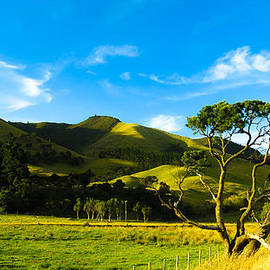 Rural Wairarapa by Teodora Motateanu