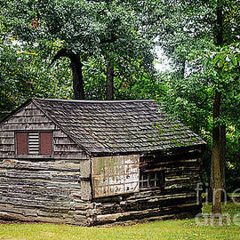 Luther Fine Art - Rustic Cabin