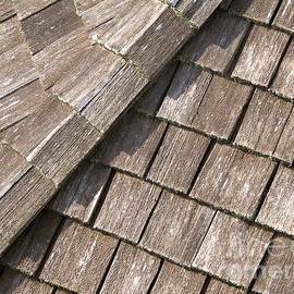 Ann Horn - Rustic Rooftop