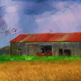 Rusty roof by Debra Baldwin