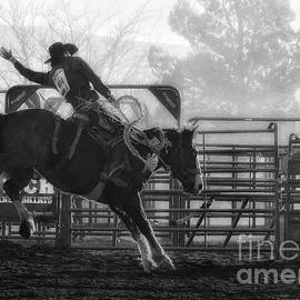 Priscilla Burgers - Saddle Bronc Riding