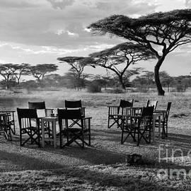 Safari Campfire by Chris Scroggins