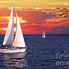 Sailboats at sunset by Elena Elisseeva