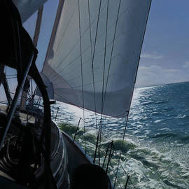 Christopher Reid - Sailing Into The Sun