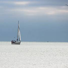 Barbara Chichester - Sailing Nokomis Beach