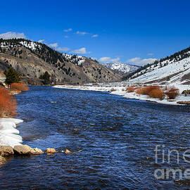 Salmon River by Robert Bales