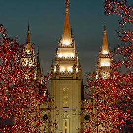 Salt Lake Temple by Carl Nielsen