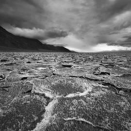 Peter Coskun - Salted Storm