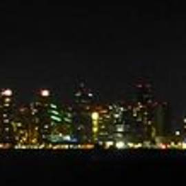 Barbie Corbett-Newmin - San Diego Night Skyline