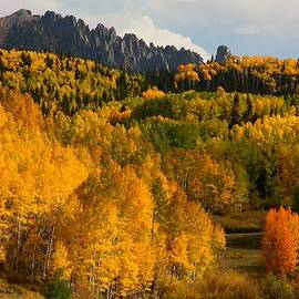 Jetson Nguyen - San Juan Mountains in autumn