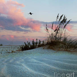 Deborah Smith - Sand and Sunset