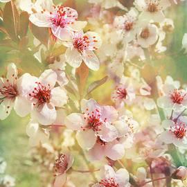 Kathi Mirto - Sand Cherry Flourish