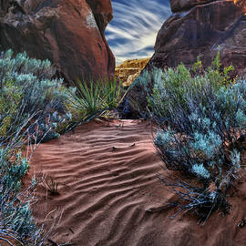 Gary Warnimont - Sandy Trail Arches National Park