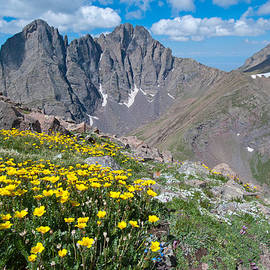 Sangre De Cristos Crestone Peak And Wildflowers by Cascade Colors