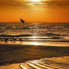Sanibel Sunrise XVI by Steven Ainsworth