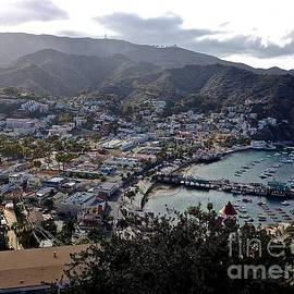 Christy Gendalia - Santa Catalina Island