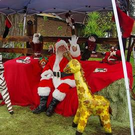 Santa Clausewith The Animals by Phyllis Spoor