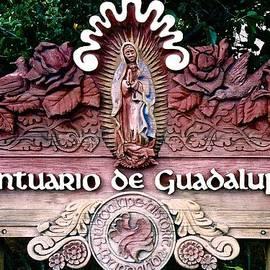 Santuario De Guadalupe by Ricardo J Ruiz de Porras