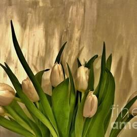 Marsha Heiken - Satin Soft Tulips