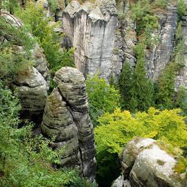Iryna Soltyska - Saxon Switzerland nature.