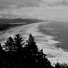 Scott Cameron - Scenic Coastal Oregon