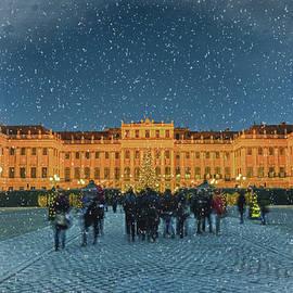 Joan Carroll - Schonbrunn Christmas Market