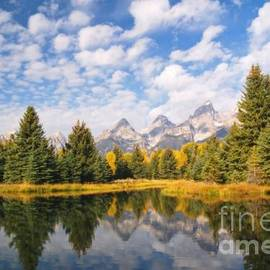 Alex Cassels - Schwabacher Ponds in Grand Teton National Park