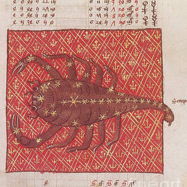 Scorpius Constellation Zodiac Sign by Science Source