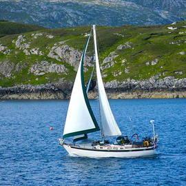 Scottish Sails by Denise Mazzocco