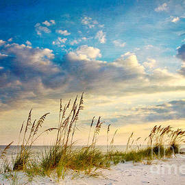 Joan McCool - Sea Oats Sunset