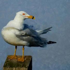 Seagull Digital Painting by Ernie Echols