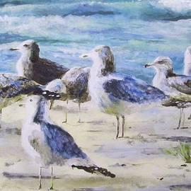 Seagulls in March by Milena Gawlik