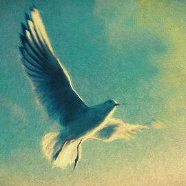 Douglas MooreZart - Seagull in Flight - In the Here and Now