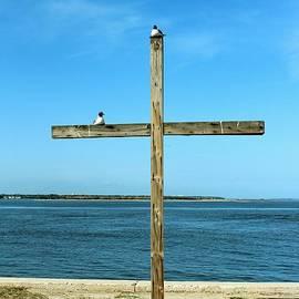 Cynthia Guinn - Seagulls On The Cross
