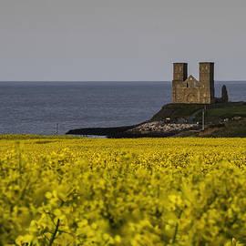 Nigel Jones - Seas of Yellow and Blue