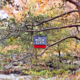 Scott Pellegrin - See Rock City