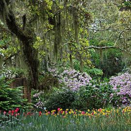 Suzanne Gaff - Sensational Springtime - Magical Garden IV