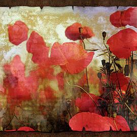 Sentimental Poppy Scroll by Georgiana Romanovna